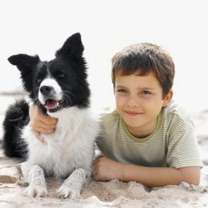 Skopelos Pet Friendly Hotels