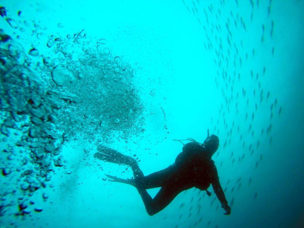 Skopelos Scuba Diving και Snorkeling στη Σκόπελο