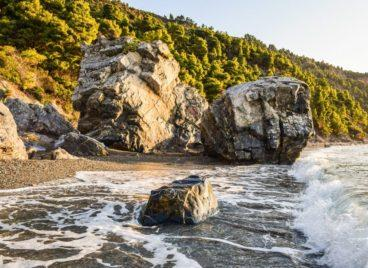 Cultural Events and Festivals in Skopelos
