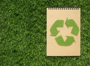 Περιβαλλοντική Πολιτική, Spyrou Skopelos Experience και Οικολογική Πολιτική